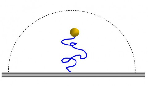 motion_image